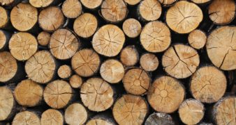Wood logs - Toronto Real Estate Broker Jethro Seymour's November Giveaway