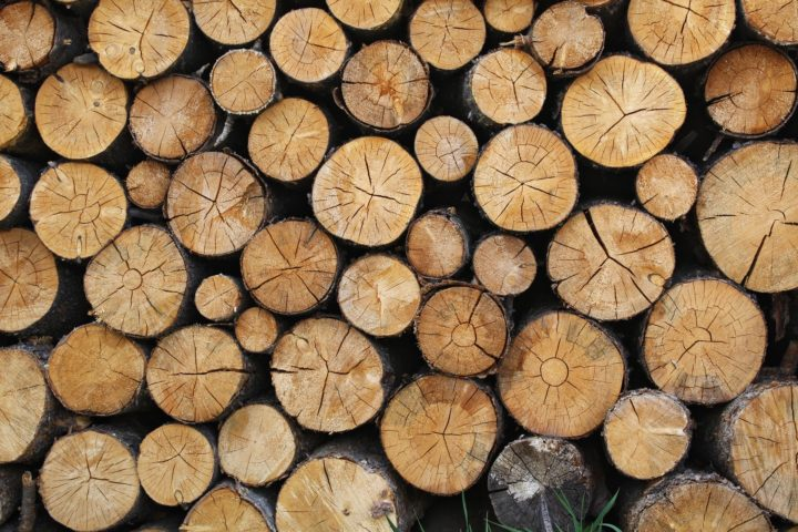 Wood logs - Broker Jethro Seymour's November Giveaway